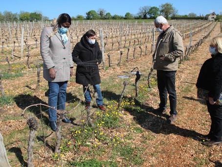 Huguette Tiegna soutient les viticulteurs amadouriens