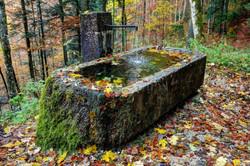Brunnen, dekoriert