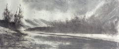 Bords du Rhône à Finges
