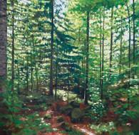 la foresta XXVIII