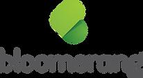 Bloomerang-Logo-Vert-RGB.png