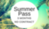 Summer Pass.png