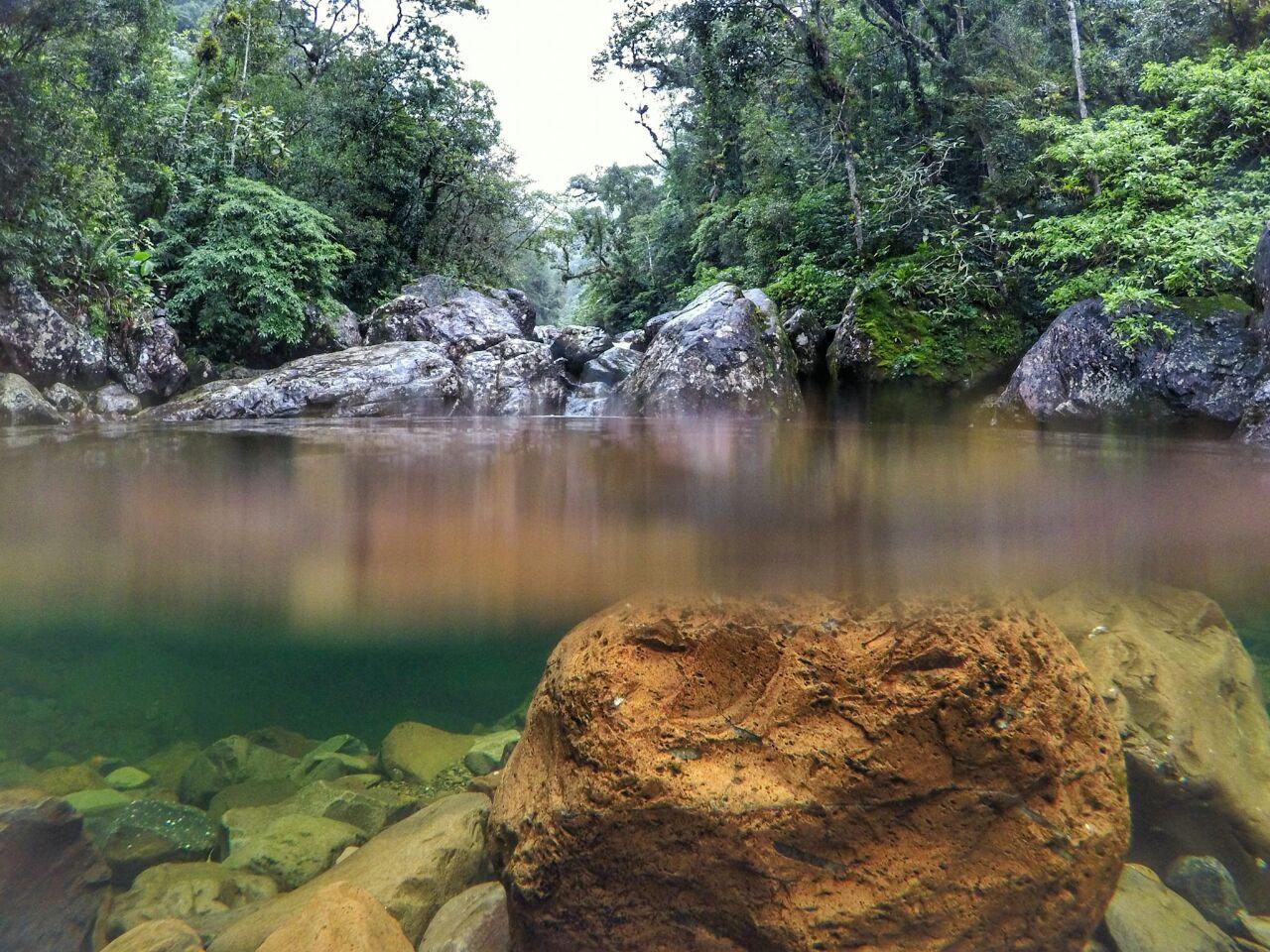 Canyon Malacara