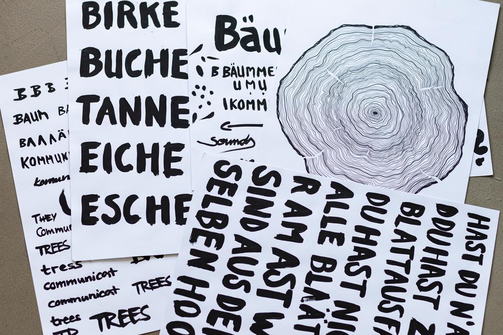 Posterserie / Bäume kommunizieren