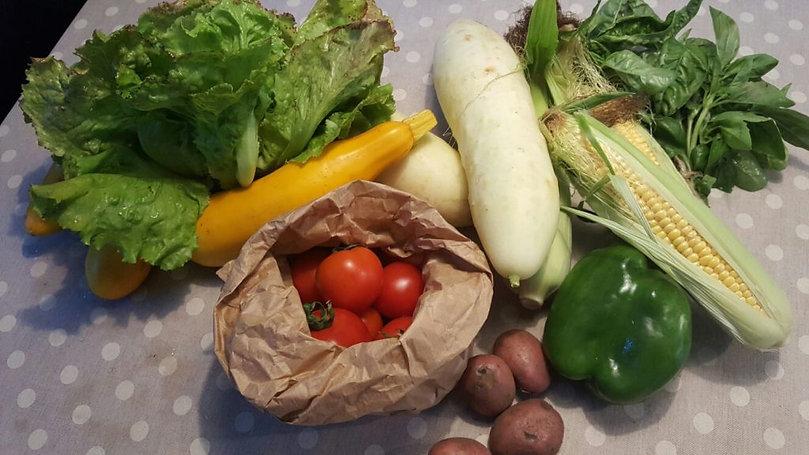 Vergeten-groenten-1024x576.jpg
