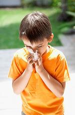 Allergen Removal