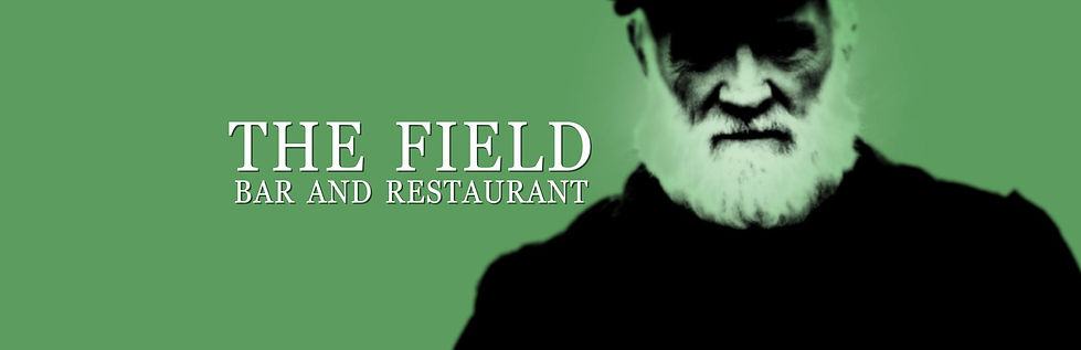 The Field Bar & Restaurant Sports & Live Music Kilkenny Logo