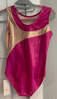 Pink and Gold Leo 2.jpeg