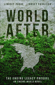 World After eBook cover.jpg