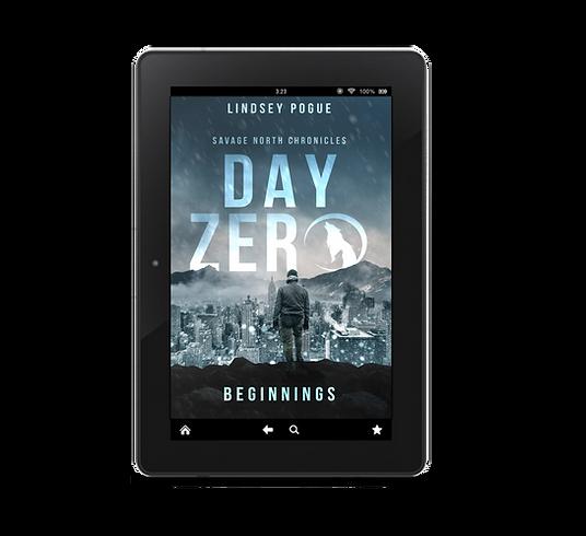 Day Zero eReader Mockup.png