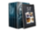 Memory Book eReader and box ste.png