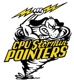 CPU_StorminNormin