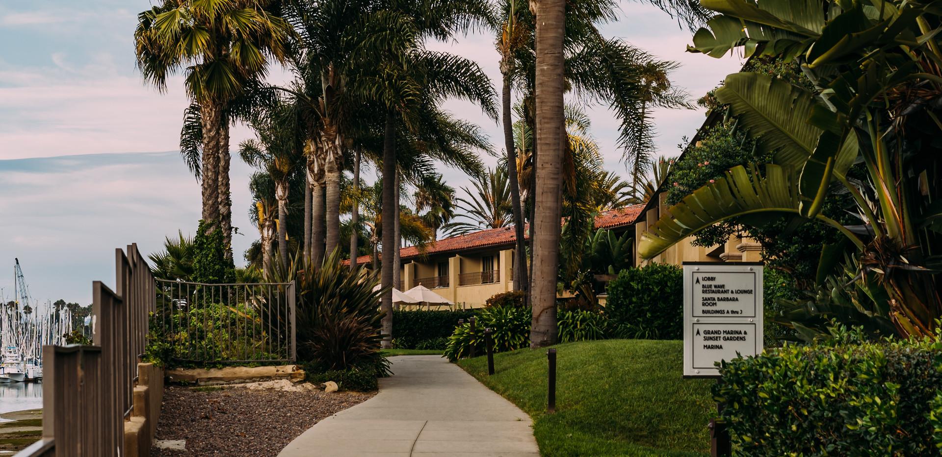 green-palm-trees-2946870.jpg