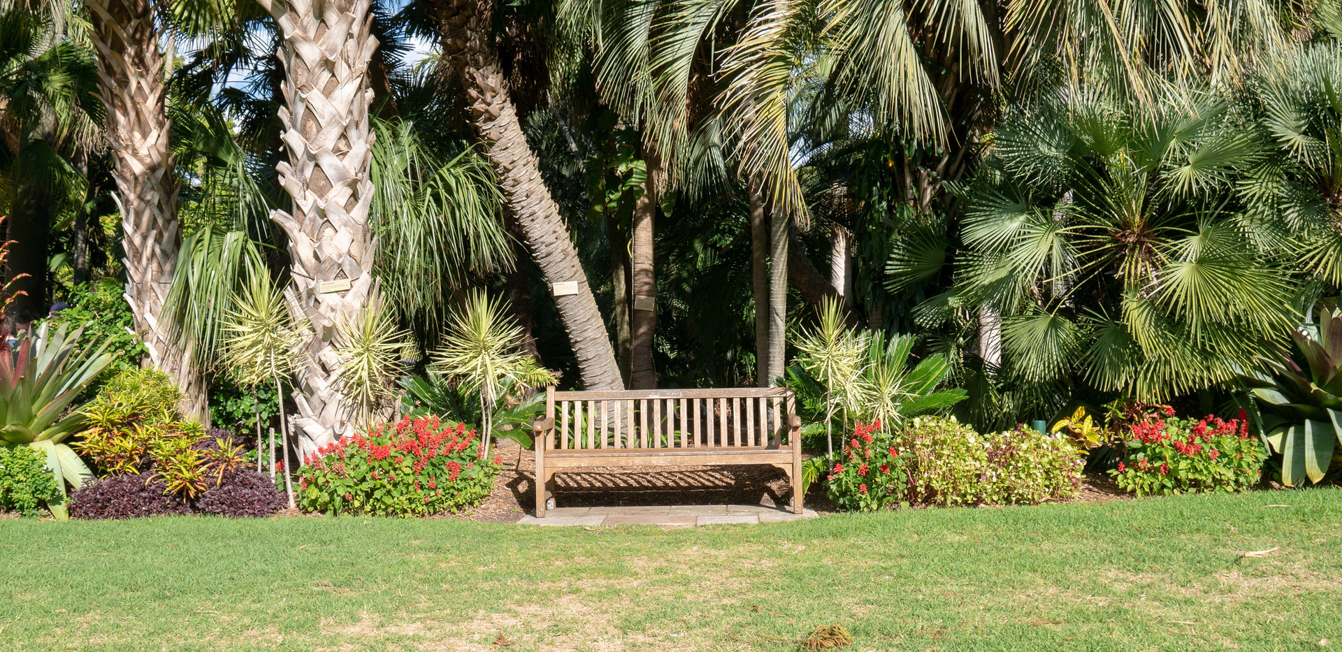 empty-brown-wooden-bench-in-a-park-16570