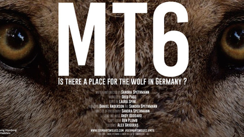 MT6 - IS THERE A PLACE FOR THE WOLF IN GERMANY?