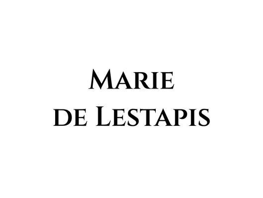 Marie de Lestapis · artiste