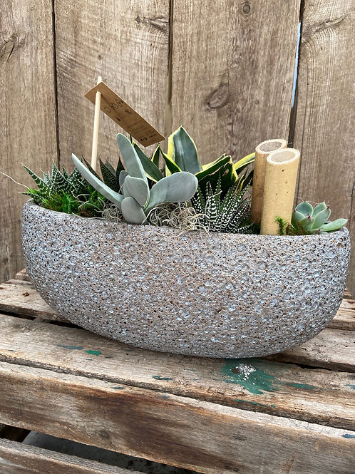 Oval Succulent Boat