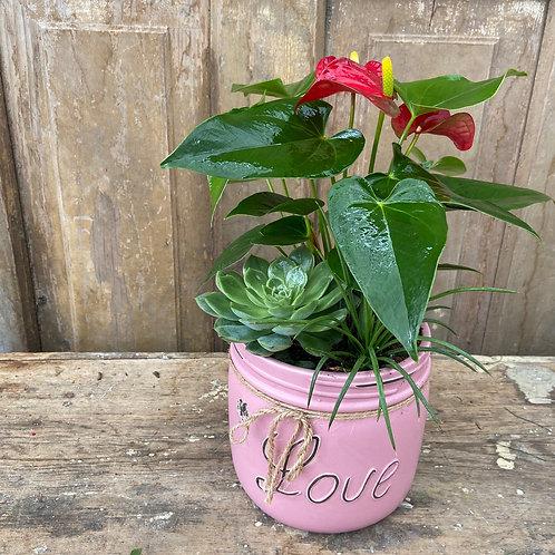 Love Planter