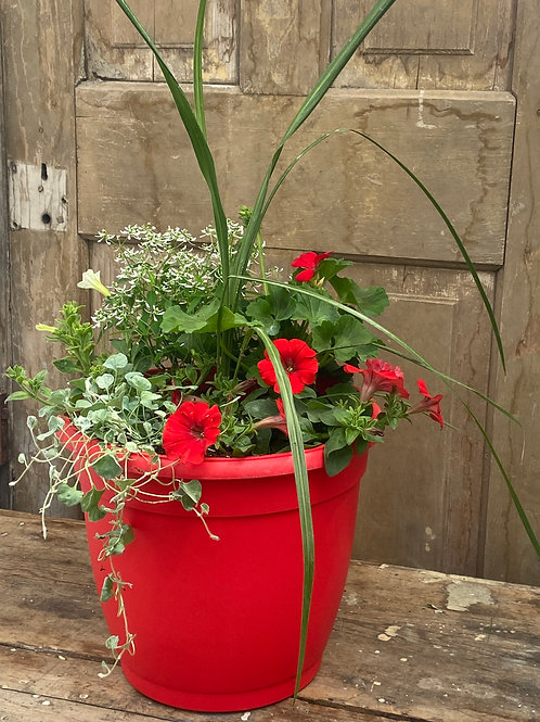 Red and White Patio Pot