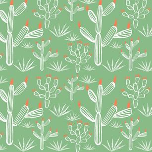 Desert Series_Sonoran