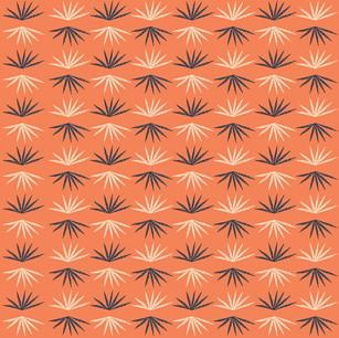 Desert Series_Yucca