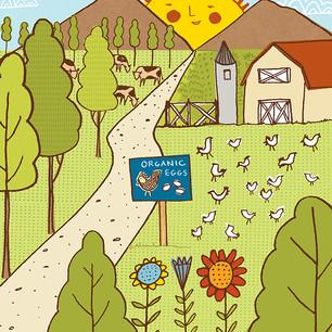 Live Happy Magazine_Organic Farm