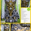 Thumbnail: Dress #601B