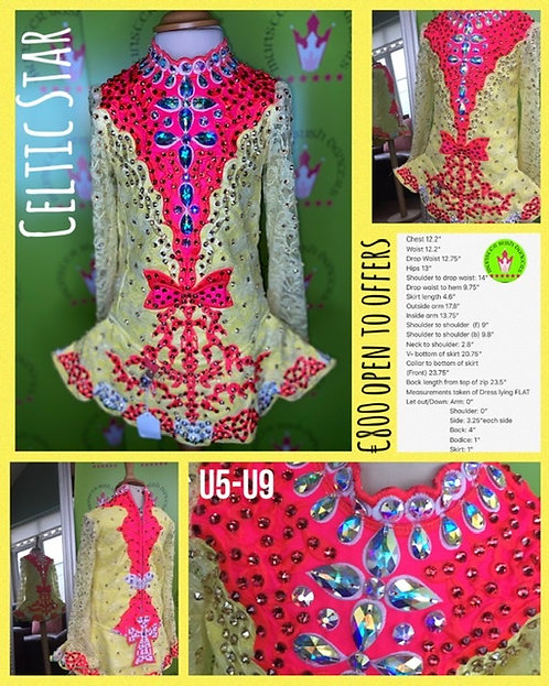Dress #213