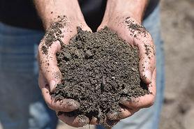 Specialty Blends & Soils