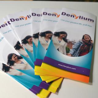 Denylium brochures.jpg