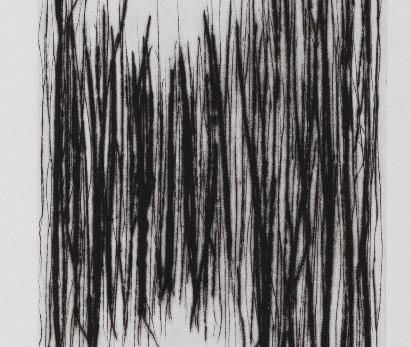PIERRE ZUFFEREY: Papiers Peints,                                 heidi+james