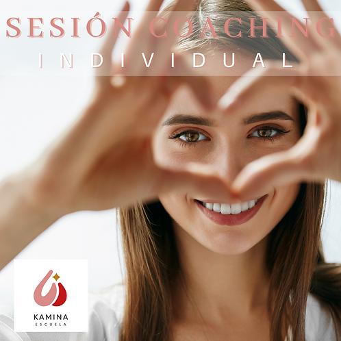 1 Sesión Coaching Individual