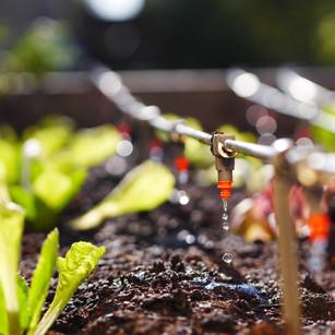 Generación AgroIndustria