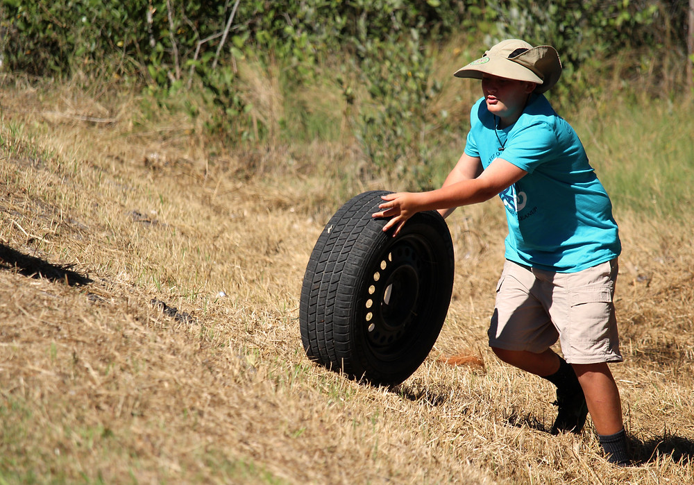 Anthony Iannuzzi rolls a tire out of the mangroves along Strauber Memorial.