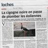 Projet éolien de Vou - La Chapelle Blanche Saint-Martin : bientôt la fin?