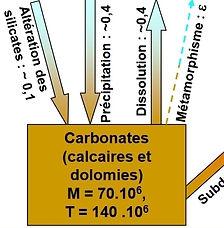 carbonates silicates.JPG