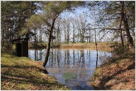 promenade dans les bois vers Bournan et Sepmes