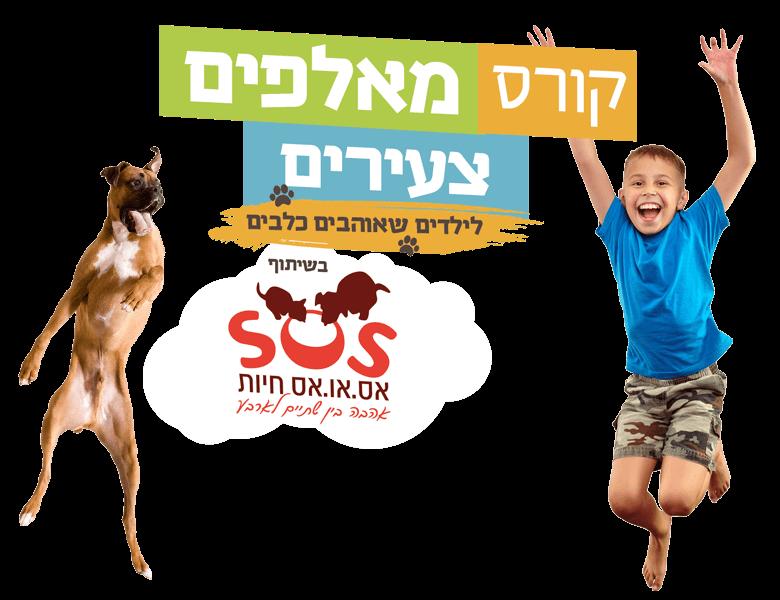 dogcenter-logo-intro_1