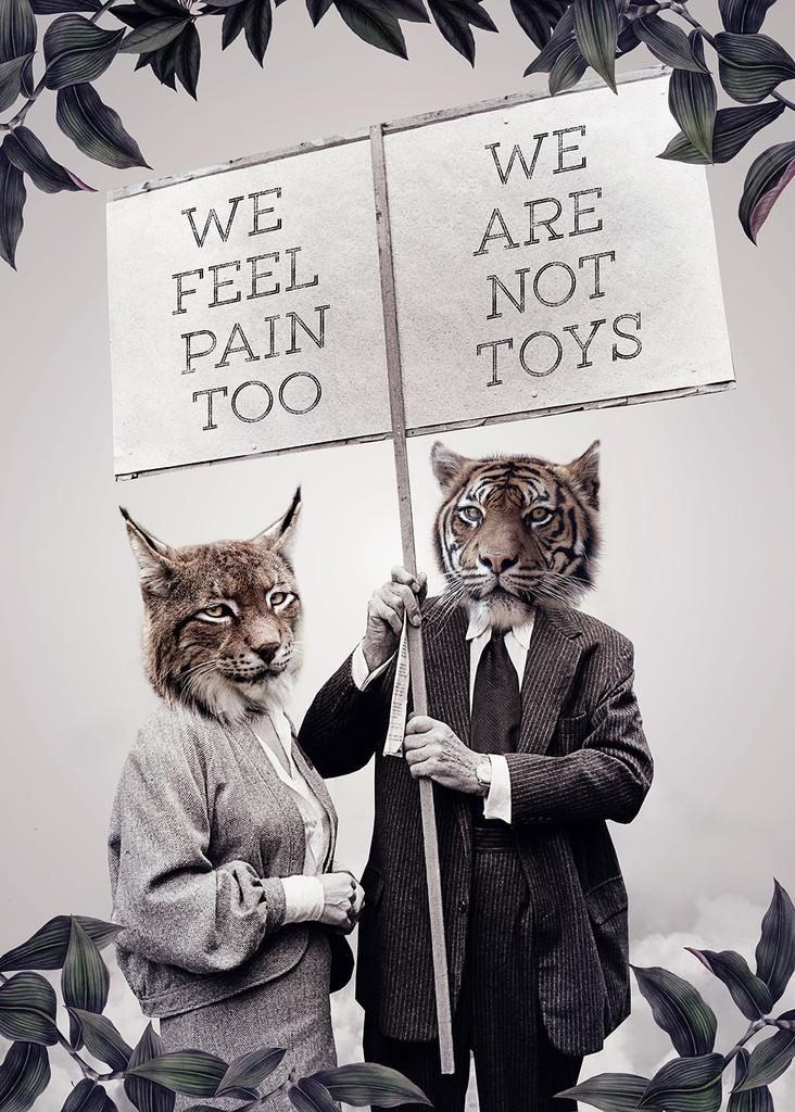WE FEEL PAIN TOO ©2019