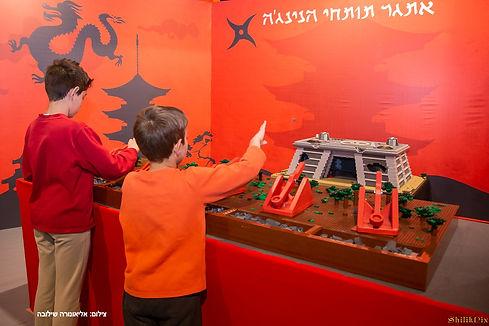 נינג'גו | עולם הלדים -הבילוי המשפחתי הולם