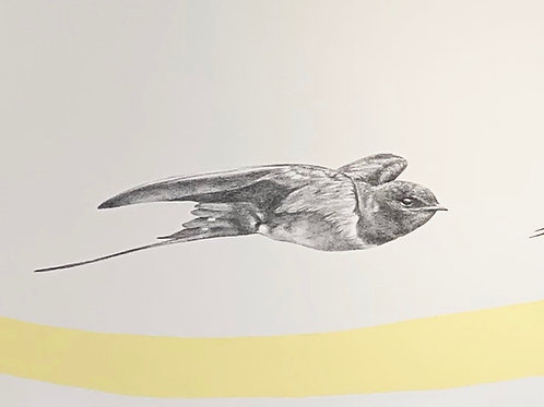 Renée A Fox. Songs of Freedom (Swallow 3), 2018. Graphite on Pellon