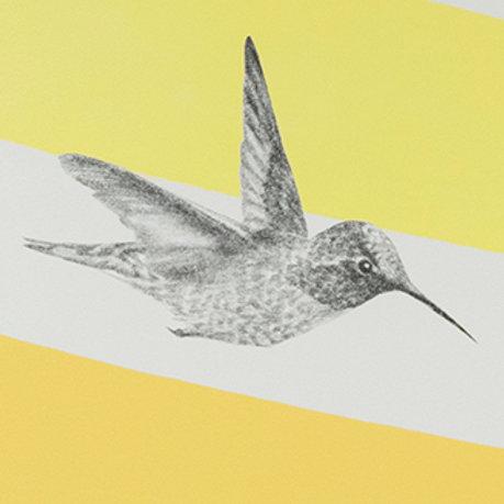 Renée A Fox. Songs of Freedom (Hummingbird 3) 2019. Graphite on Pellon.