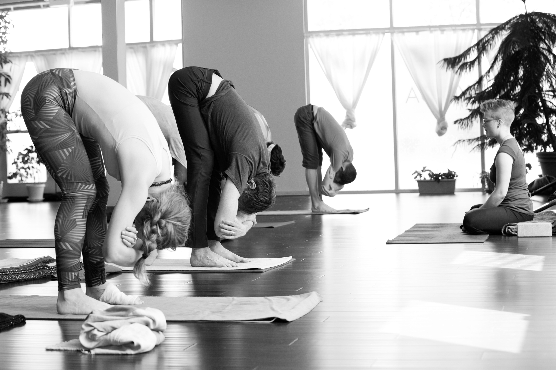One Yoga Non Profit Yoga Studio United States