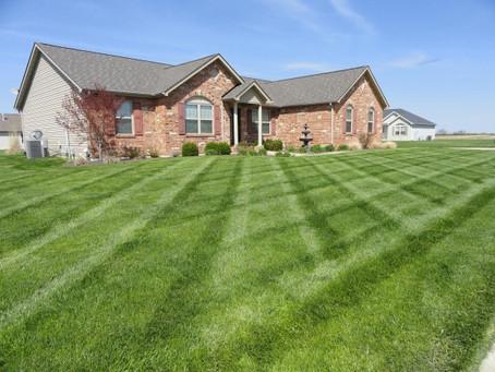 J.Y.C lawn Mowing Services