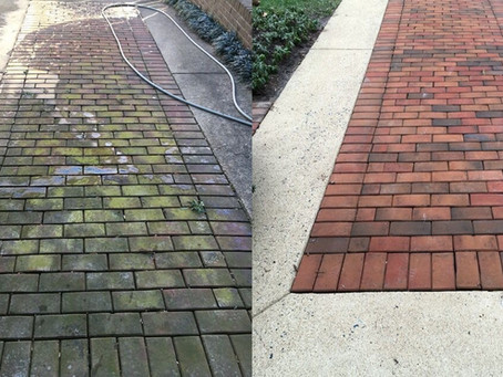 Need pavers clean?