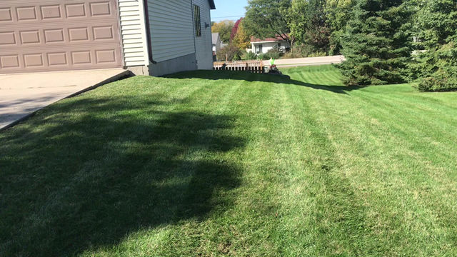 Exceptional mowing services