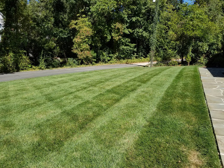 Mowing Residential Property