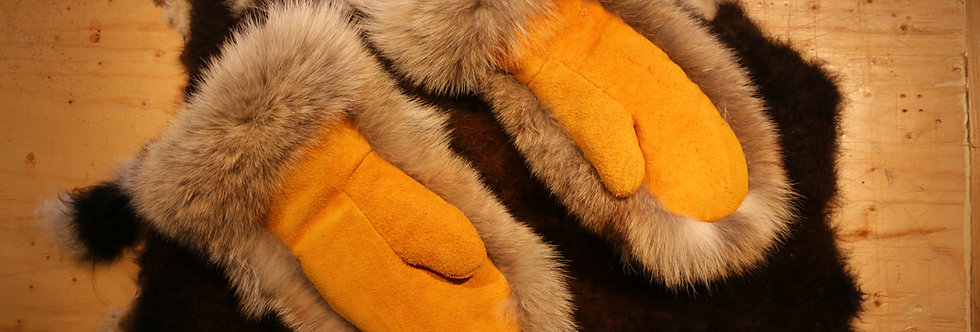 Coyote Moose Mits