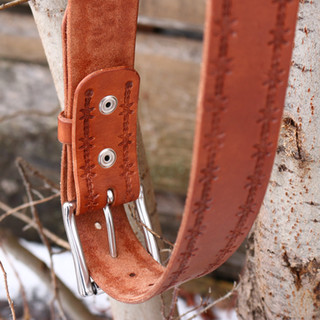back of belt.JPG