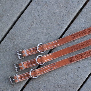 Collars .JPG